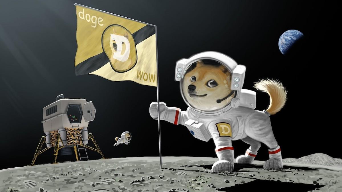 Dogecoin tiktok